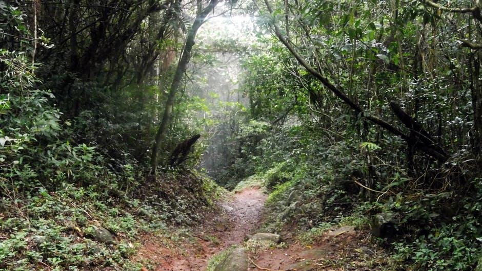 kannoures_trail